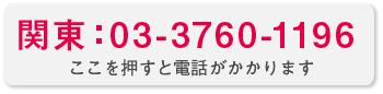 関東:0337601196