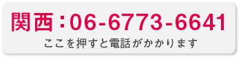 関西:0667736641